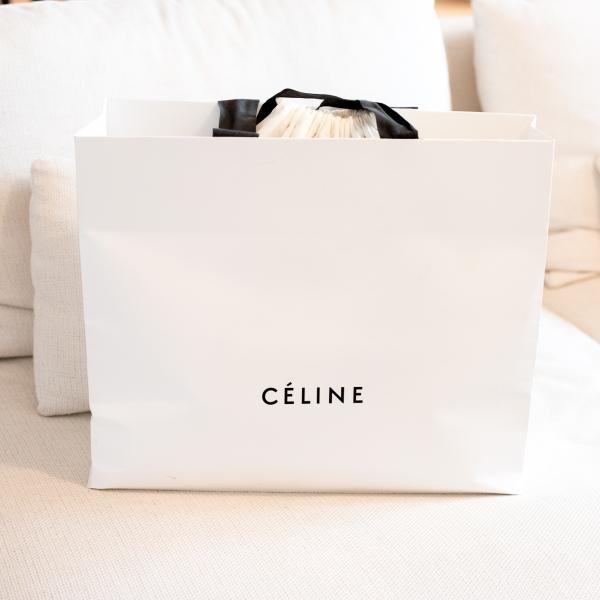 Celine Belt Bag Review 1