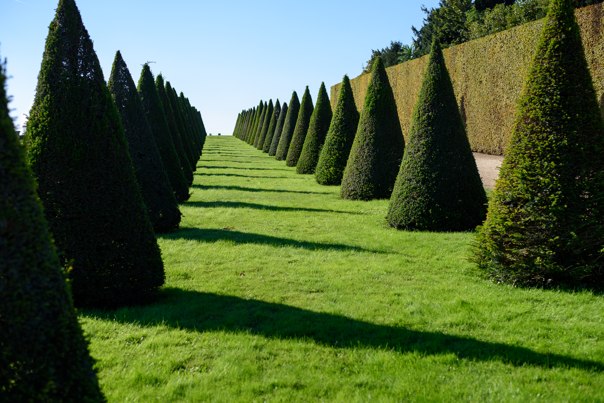 palace-of-versailles-garden-2