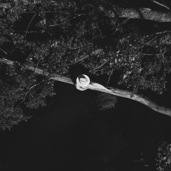 Anna Sofia Tree Drone 2