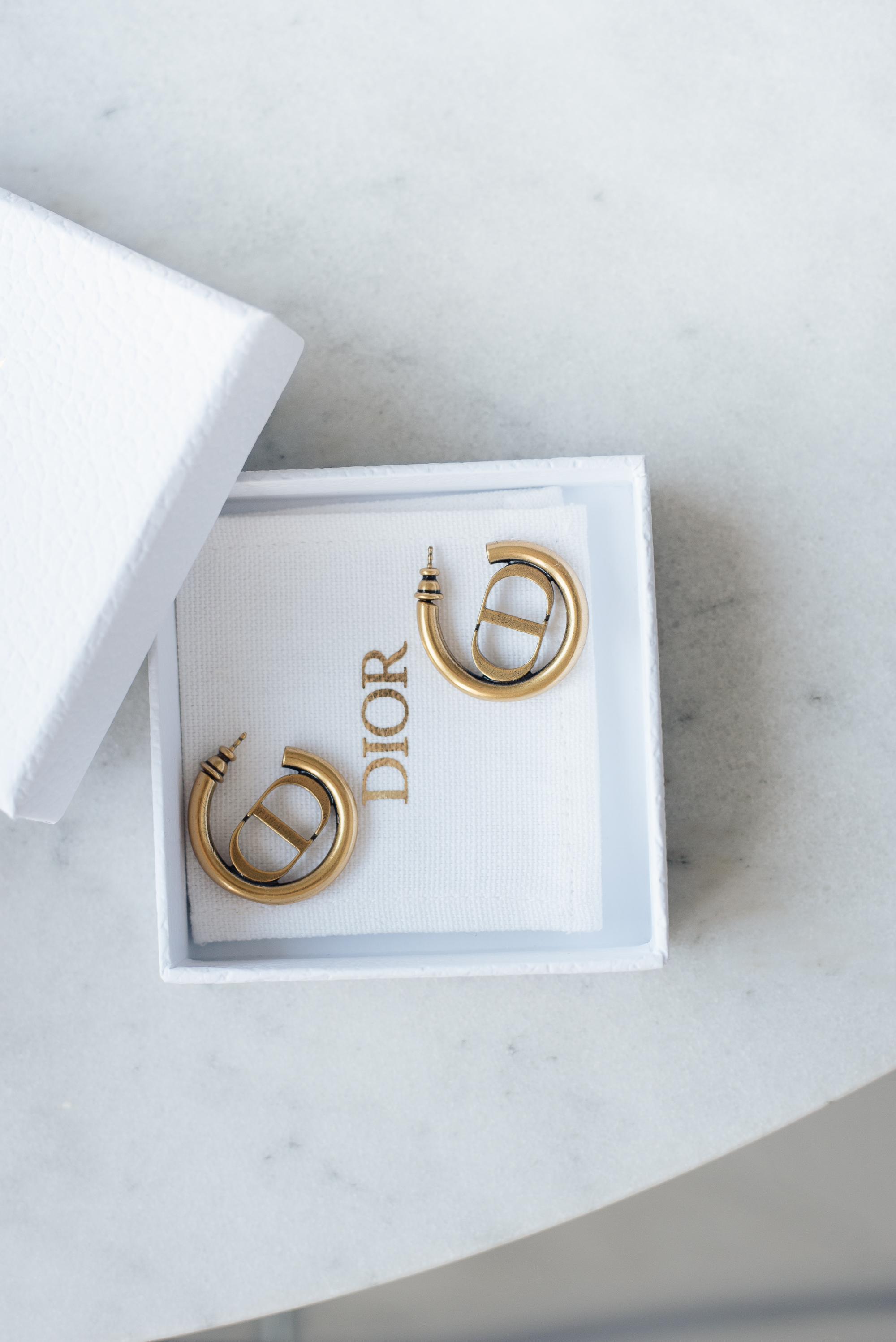 Style Plaza Dior Hoops 2 1